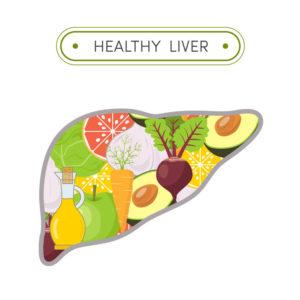 healthy liver y90 procedure